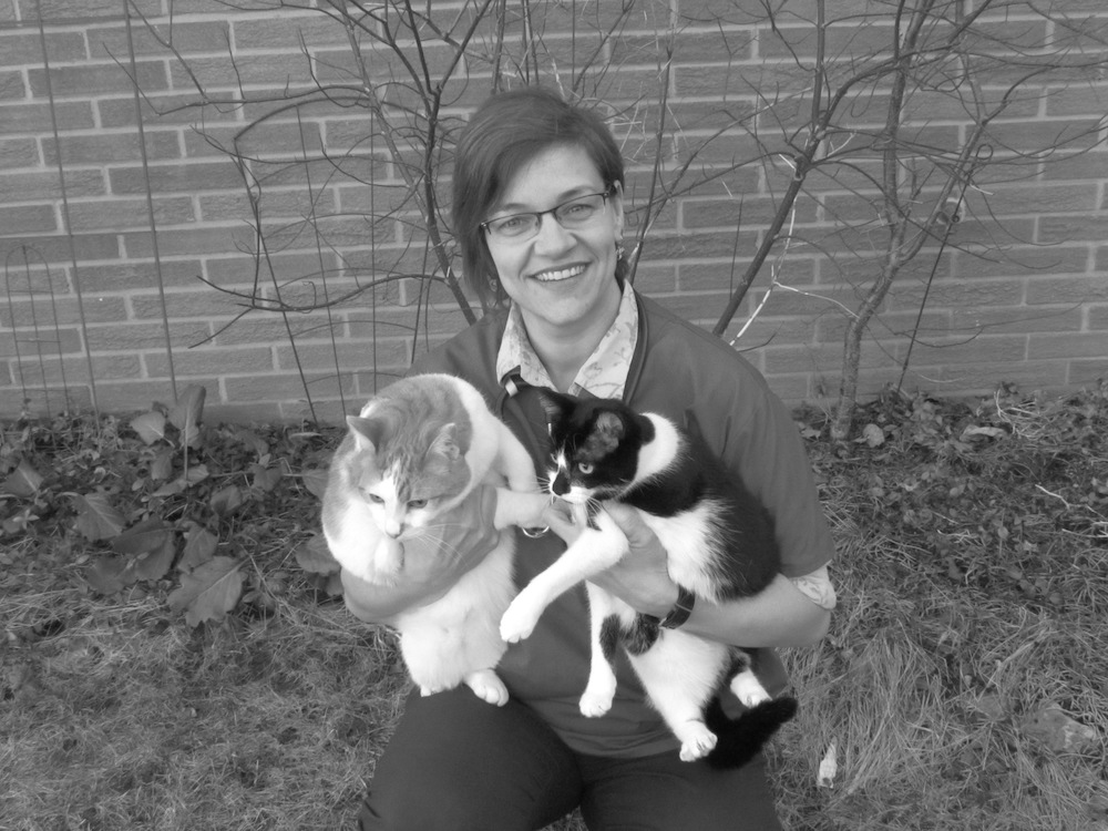 Dr. Sara Untch